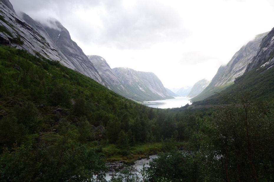 Firoduri Norvegia