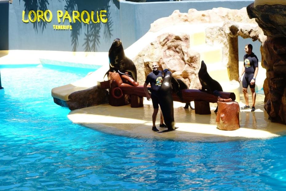 Loro Parc - Tenerife